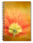 Poppy On Fire Spiral Notebook