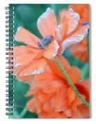 Poppy Passion Spiral Notebook