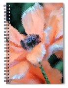 Poppy Primadonna Spiral Notebook