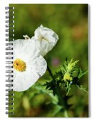 Poppy Wildflower Spiral Notebook