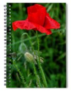 Poppy's Course Of Life Spiral Notebook