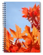 Popular Autumn Art Red Orange Fall Tree Nature Baslee Troutman Spiral Notebook
