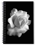 Porcelain Rose Flower Black And White Spiral Notebook