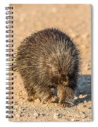 Porcupine Walking Spiral Notebook