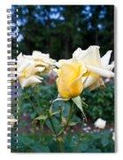 Portland Roses #3 Spiral Notebook