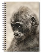 Portrait Of A Baby Gorilla Digitally Altered Spiral Notebook