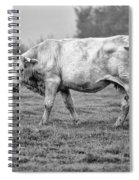 Portrait Of A Cow Spiral Notebook