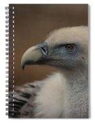 Portrait Of A Griffon Vulture Spiral Notebook