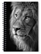 Portrait Of A King Spiral Notebook