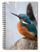 Portrait Of A Kingfisher Spiral Notebook
