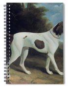 Portrait Of A Liver And White Pointer Spiral Notebook