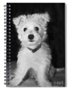 Portrait Of A Puppy In Black And White Spiral Notebook