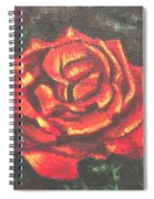 Portrait Of A Rose 2 Spiral Notebook