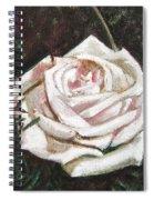Portrait Of A Rose 3 Spiral Notebook