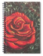 Portrait Of A Rose 4 Spiral Notebook