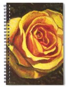 Portrait Of A Rose 5 Spiral Notebook