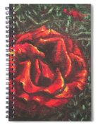 Portrait Of A Rose 6 Spiral Notebook