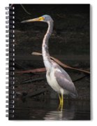 Portrait Of A Tri-colored Heron Spiral Notebook