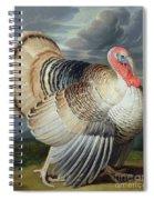 Portrait Of A Turkey  Spiral Notebook