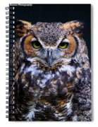Portrait Of A Wise Man Spiral Notebook
