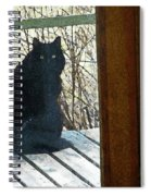 Portrait Of Abby Spiral Notebook