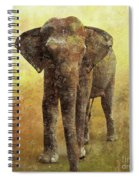 Portrait Of An Elephant Digital Painting With Detailed Texture Spiral Notebook