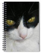 Portrait Of Flopsy Spiral Notebook