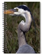 Portrait Of Great Blue Heron Spiral Notebook