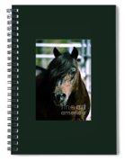 Portrait Of His Majesty - The King Spiral Notebook