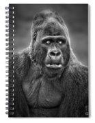Portrait Of King Kongs Cousin IIi Spiral Notebook