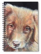 Portrait Of Toby Spiral Notebook