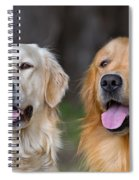 Portrait Of Two Young Beauty Dogs Spiral Notebook