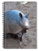 Posing Armadillo Spiral Notebook