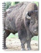 Posing Spiral Notebook