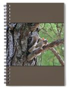 Posing Squirrel Spiral Notebook