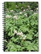 Potato Flower Agriculture Spring Scene Spiral Notebook