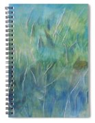 Potential Field Spiral Notebook
