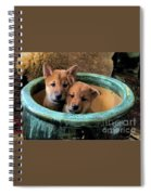 Potted Puppies Spiral Notebook