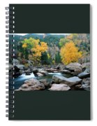 Poudre Gold Spiral Notebook