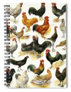 Poultry Spiral Notebook