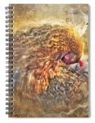 Poultry Passion Spiral Notebook