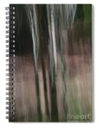 Pouring Down Spiral Notebook