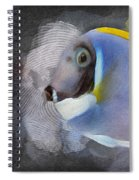 Powder Blue Tang No 01 Spiral Notebook
