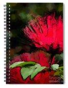 Powder Puff In Red Spiral Notebook