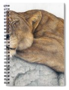 Power And Grace At Rest Spiral Notebook