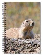 Prairie Dog  9255 Spiral Notebook