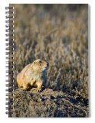 Prairie Dog Alert Spiral Notebook