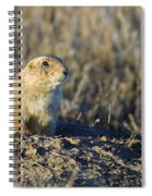 Prairie Dog Watchful Eye Spiral Notebook