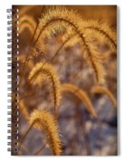 Prairie Grass Detail Spiral Notebook