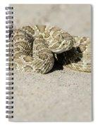 Prairie Rattlesnake  Spiral Notebook